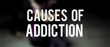 Theories On Causes of Addiction
